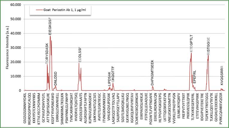 specificity of the human Periostin ELISA Detection Antibody