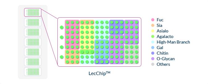 LecChip™ – Lectin Microarray