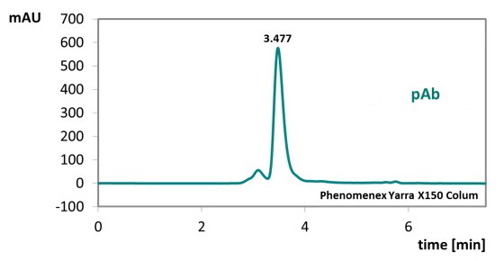 purity of detection antibody used in the bioactive Sclerostin ELISA