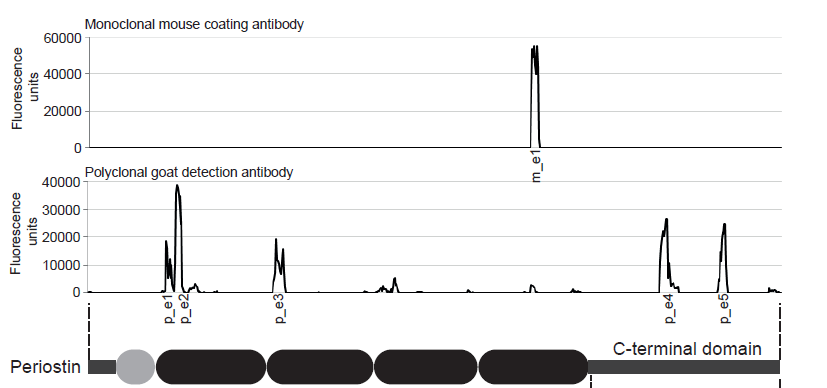 specificity of the mouse Periostin ELISA