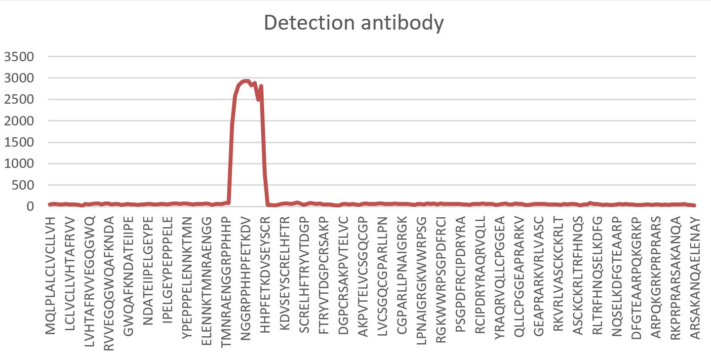 specificity of the Sclerostin ELISA detection antibody