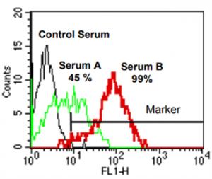C4d FlowPRA Test Using Anti-C4d FITC Antibody